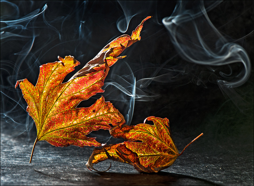 La fumée de l'automne
