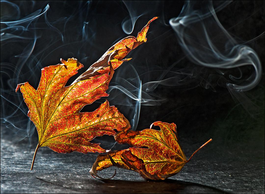 La fumée de l'automne - Lazoura Cortial
