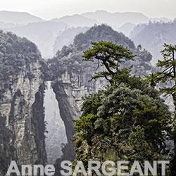 Sargeant-Anne-Avatar
