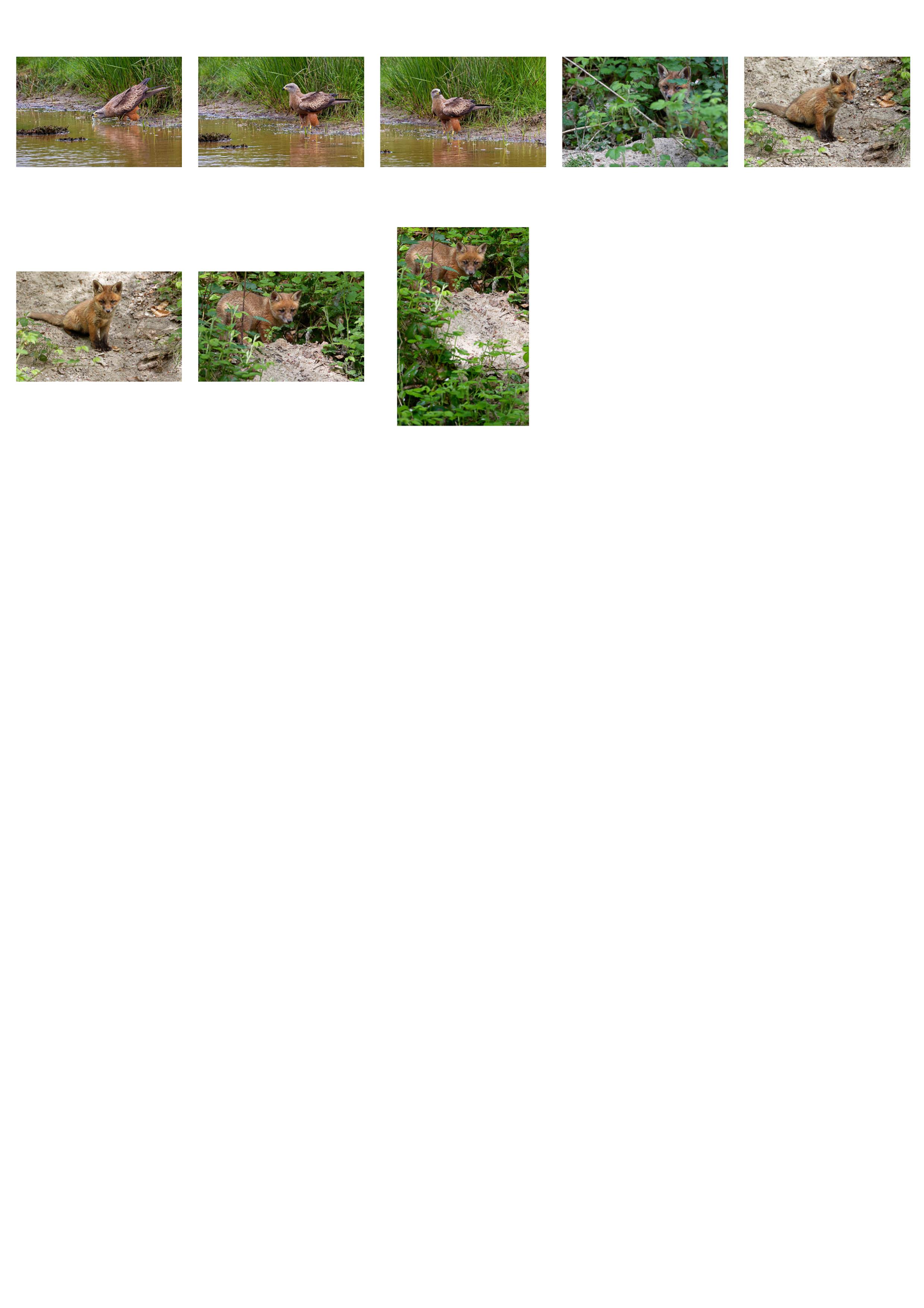 150612-retenues-3.jpg-3