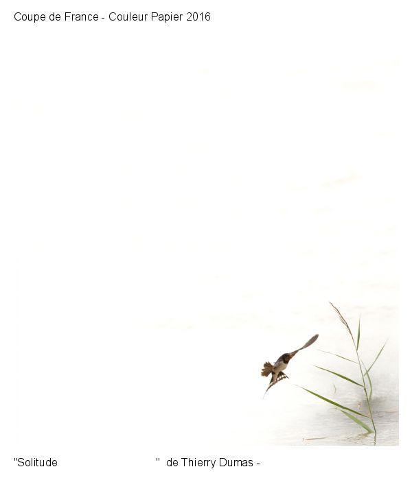 Solitude - Thierry Dumas