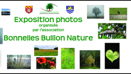 Bonnelles Bullion Nature